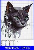 Schemi gatti-gato-gris-jpg