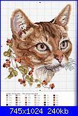 Schemi gatti-gato-cafe-2-jpg