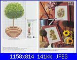 schemini piante-9-jpg