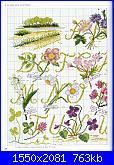 """Alfabeto - rivista """"DFEA n° 19-Dossier Provence""""-19-7-jpg"""