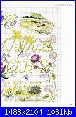 """Alfabeto - rivista """"DFEA n° 19-Dossier Provence""""-3-jpg"""