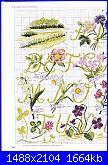 """Alfabeto - rivista """"DFEA n° 19-Dossier Provence""""-2-jpg"""