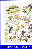"""Alfabeto - rivista """"DFEA n° 19-Dossier Provence""""-2mod-jpg"""
