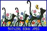 cerco gatti monocolore-sg12-jpg