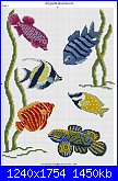 per le iscritte a Club Point de Croix-pesci_tropicali_01-png