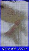 Chi mi realizza degli schemi punto croce da queste foto!-foto1-4-jpg