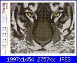 Cerco questo schema leggibile-c59c996a0f8c-jpg