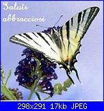 Regalo! Cross Stitcher Agosto 2009-saluti-jpg