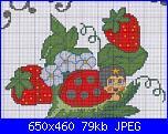 schema coccinella-mora90_-jpg