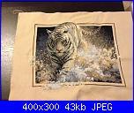 cerco schema lupi e tigre-e-jpg