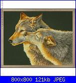 cerco schema lupi e tigre-i-grande-53891-baiser-de-loup-net-jpg