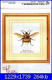 Thea gouverneur-bumble bee-tg_3018-jpg