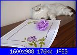 rose viola-img_3700-jpg