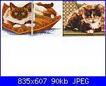 gatto sul cuscino-immagine-jpg