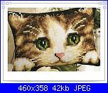 cerco musetto di gatto monocolore...-800874ae20399a13567ec162ee306b61-jpg