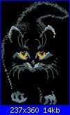 cerco musetto di gatto monocolore...-85782-ff7f5-10687256-m750x740-u6a1e4-jpg