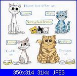 schema gatti con risoluzione migliore-gatti_gattini1a-jpg