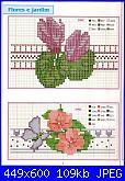 Schema ciclamino-barras1-jpg