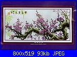 Schema alberi di ciliegio o sakura-14549583933161585261507-jpg