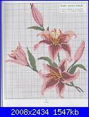 fiore-img_20130301_0009-jpg