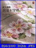 Cerco libro Megumi Onoe-1-jpg