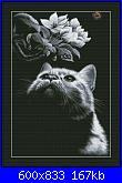 Cerco questo schema-gatto-nero-2-jpg