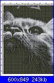 Cerco questo schema-gatto-nero-7-jpg