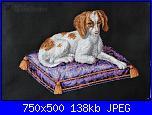 Schema cane-332250-785cd-68448459-m750x740-u137d5-jpg