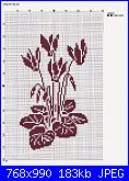 Informazioni schemi luli-ciclamini-jpg