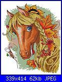 cerco legenda colori cavallo-o8dihyf9k00-jpg