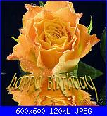 BUON COMPLEANNO EVELYN-f_rosehappybim_52b1159-jpg