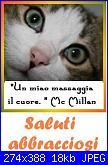 set asilo bambino con Gatto Silvestro baby-saluti-jpg