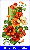 Cerco schemi di questi fiori-271665-5e031-103174511-m750x740-u71bee-jpg