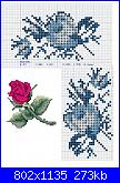 rose azzurre-roseb-jpg