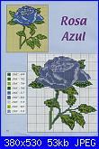 rose azzurre-rosa%2520azul001%252d1-jpg