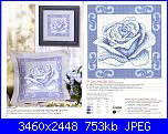 rose azzurre-6-7-jpg