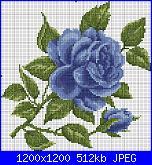 rose azzurre-r-b-jpg