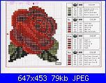 Rose Rosse-rosa_2-jpg