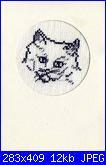 Sciarpina con gatti-gattino1a-jpg