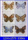 spero che questi vadano vede-farfalle1-%5B1600x1200%5D-jpg