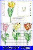 Cerco schema tulipani o orchidee.....-tulipani-jpg