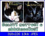 Amanti gatti e cuori - Regalo per voi-saluti-1-jpg