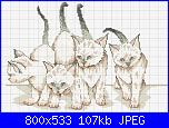 Amanti gatti e cuori - Regalo per voi-gatti-jpg