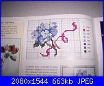 cerco schemi di ortensie-ortensia1-jpg