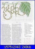 cerco schemi di ortensie-csn-july-2008-12-jpg