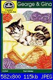 Schema con gatti che dormono-foto-jpg