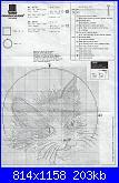 ancora una richiesta....schema micio-65114-chart-jpg