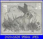 Cerco vecchi schemi Susanna-schema-coniglio-jpg