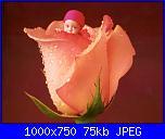 Schemi Anne Geddes!!!-155951-95179-16252701-jpg