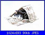 Gatto bianco per Rosie-gatto-con-giorna-108-jpg